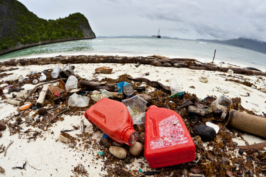 Clean Beaches and a Clean Planet: Don't Trash Them!