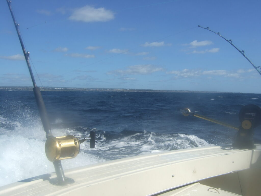 Different Kinds of Charter Fishing
