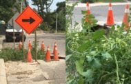 Toronto is finally filling this sinkhole because annoyed residents turned it into a tomato garden