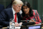 Haley Takes UN Miscreants to Task