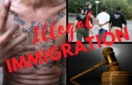 Illegals Crime Report – January 25 – 31