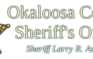 OCSO Responds to Near Drowning